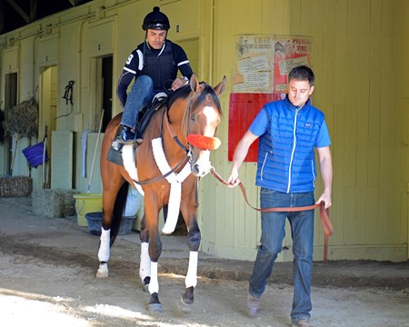 Caption: Goldencents