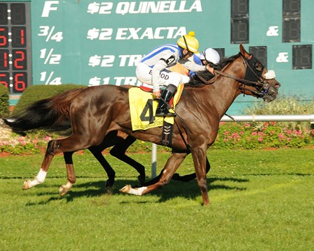 Pin Oak Stud's homebred Cloud Scapes carried on in the $150,000 Grade III Hillsborough Stakes at Tampa Bay Downs, edging Waterway Run to earn her third straight victory at the Florida oval.