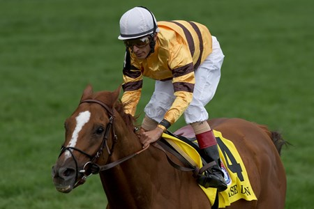 Jockey John Velazquez guides Wise Dan to victory in the $1,000,000 dollar Ricoh Woodbine Mile.