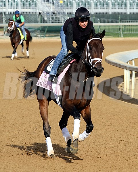 Unlimited Budget on the track at Churchill Downs on May 2, 2013.