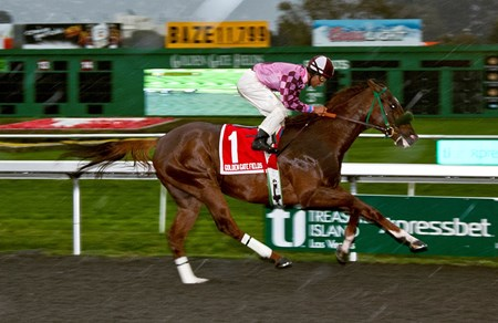 Gig Harbor wins the $50,000 added, Oakland Stakes, trained by Steven Specht , ridden by Frank Alvarado, the 6 furlong race time was 1:09.07 under rainy skies at Golden Gate Fields. 