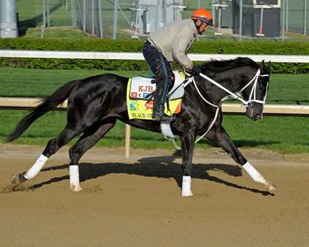 Caption: Black Onyx