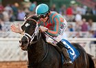 Conquest Two Step Surprises in Palos Verdes