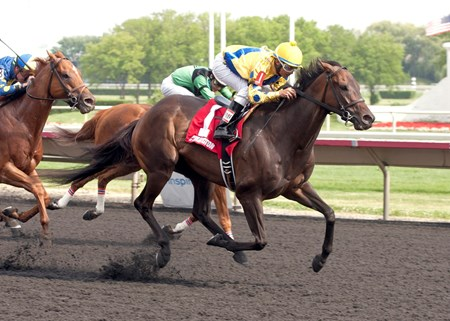 SWEET LUCA winning the Addison Cammack Stakes at Arlington International on 7-26-14 Jockey C. H. Marquez Jr. up.