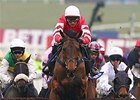 Coneygree comes home strong to win the coveted Cheltenham Gold Cup.