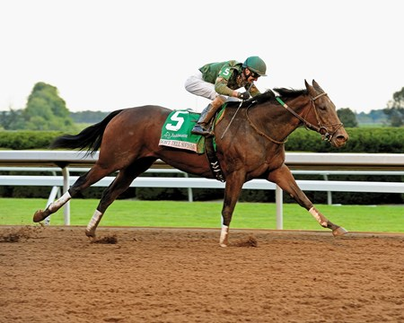 Don't Tell Sophia, last rounding the far turn, roared down the center of the stretch run to register her first grade I victory in the $500,000 Juddmonte Spinster Stakes on the Keeneland main track as overwhelming favorite Close Hatches fizzled.