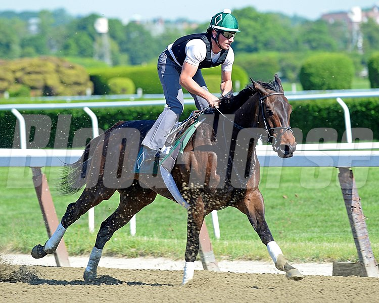 Caption: Close Hatches