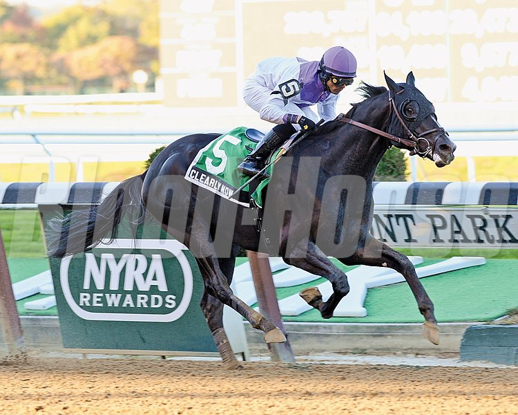 Clearly Now returned to his winning ways when he skillfully stalked the pace to score a 1 1/2-length triumph in the $200,000 Grade III Bold Ruler Handicap at Belmont Park in New York.