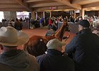 Keeneland's November Juggernaut Rolls On