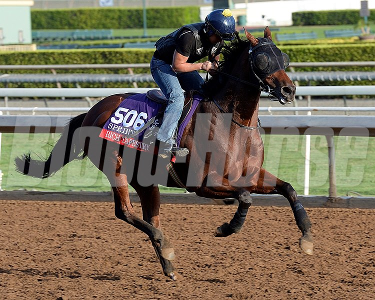 Caption:  Rich Tapestry