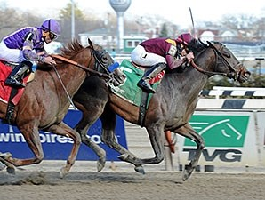 March wins the 2015 Bay Shore Stakes.