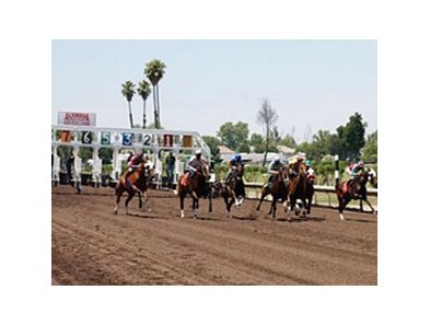 Alameda County Fair Racetrack.