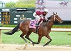 Untapable won the 2015 Apple Blossom Handicap.