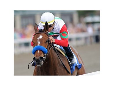 "Beaumont winner Franny Freud<br><a target=""blank"" href=""http://www.bloodhorse.com/horse-racing/photo-store?ref=http%3A%2F%2Fpictopia.com%2Fperl%2Fgal%3Fprovider_id%3D368%26ptp_photo_id%3D8881697%26ref%3Dstory"">Order This Photo</a>"