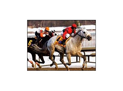 Silver Wagon rallied to defeat Ah Day in the General George Stakes at Laurel Park.