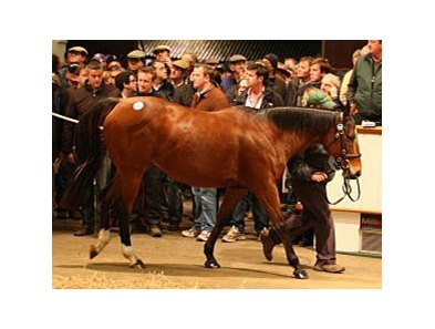 Sumora sold for 2,400,000 guineas to top the second day of the Tattersalls December Mare Sale.