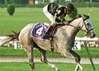 Gaviola, with jockey Jerry Bailey aboard, captures the Garden City Breeders Cup Handicap at Belmont Park.