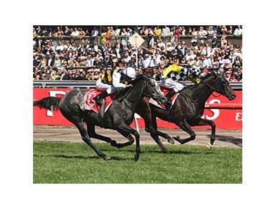 Viewed (inside, checkered silks), edges out Bauer in the Melbourne Cup.