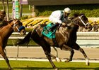 "Cowboy Cal goes gate to wire to score a victory in the Oak Tree Mile.<br><a target=""blank"" href=""http://www.bloodhorse.com/horse-racing/photo-store?ref=http%3A%2F%2Fpictopia.com%2Fperl%2Fgal%3Fprovider_id%3D368%26ptp_photo_id%3D8942247%26ref%3Dstory"">Order This Photo</a>"