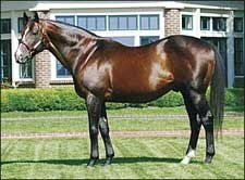 Lane's End Stallions' Offspring One, Two, Three, Five in Belmont