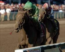 Grade I Winner Shadow Cast Injured and Retired