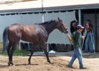 Mine That Bird arrives at Ruidoso Downs, as trainer Chip Woolley watches.
