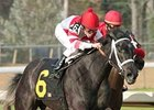 Eight Belles and jockey Ramon Dominguez won Oaklawn's Honeybee (gr. III) with deceptive ease.