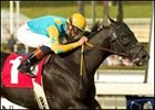 Undefeated E Z Warrior shown winning the San Miguel