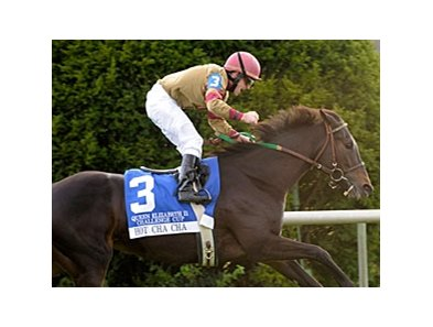 Hot Cha Cha comes into the Mrs. Revere off a victory in the Queen Elizabeth II Challenge Cup.