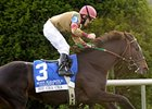 "Hot Cha Cha's biggest win came at Keeneland, on the turf in the 2009 Queen Elizabeth II Challenge Cup.<br><a target=""blank"" href=""http://www.bloodhorse.com/horse-racing/photo-store?ref=http%3A%2F%2Fpictopia.com%2Fperl%2Fgal%3Fprovider_id%3D368%26ptp_photo_id%3D8560492%26ref%3Dstory"">Order This Photo</a>"
