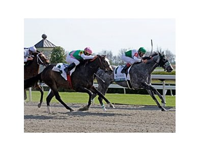 "Informed Decision overtakes Ventura to win the Vinery Madison.<br><a target=""blank"" href=""http://www.bloodhorse.com/horse-racing/photo-store?ref=http%3A%2F%2Fpictopia.com%2Fperl%2Fgal%3Fprovider_id%3D368%26ptp_photo_id%3D7994838%26ref%3Dstory"">Order This Photo</a>"