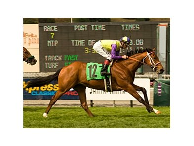 Battle of Hastings has been installed as a 2-1 favorite in the fifth running of the Colonial Turf Cup at Colonial Downs.