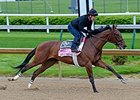 Birdatthewire works at Churchill Downs April 25.