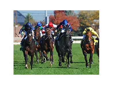 "Wrote (far left) leads them home in the Breeders' Cup Juvenile Turf.<br><a target=""blank"" href=""http://www.bloodhorse.com/horse-racing/photo-store?ref=http%3A%2F%2Fpictopia.com%2Fperl%2Fgal%3Fprovider_id%3D368%26ptp_photo_id%3D9729043%26ref%3Dstory"">Order"