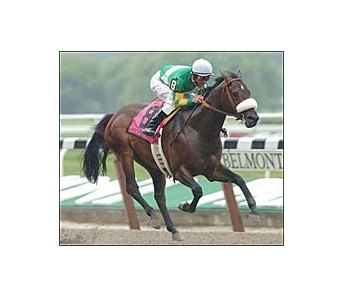 Pico Central, ridden by Alex Solis, winning the Metropolitan Handicap.