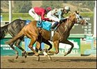 Stormello upset the Norfolk Breeders' Cup under Kent Desormeaux.