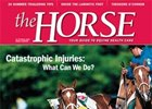 Special Report: Catastrophic Injuries
