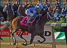 Jazil Entered in Aqueduct Allowance Race Friday