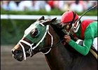 Hutcheson winner King of the Roxy, one of the new challengers expected to face Street Sense in the Preakness.