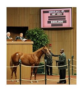 A chestnut son of Smart Strike brought $900,000 late in the day of the fourth session of the Keeneland September yearling sale.