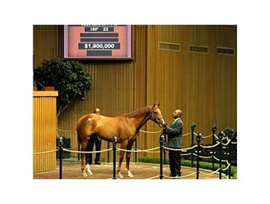 Vallenzeri sells for $1.9 million during the first session of the Keeneland 2-year-old sale.