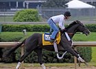 "Jackson Bend turned in a bullet five-furlong work in 1:00-flat April 22 at Churchill Downs.<br><a target=""blank"" href=""http://www.bloodhorse.com/horse-racing/photo-store?ref=http%3A%2F%2Fpictopia.com%2Fperl%2Fgal%3Fprovider_id%3D368%26ptp_photo_id%3D8909841%26ref%3Dstory"">Order This Photo</a>"