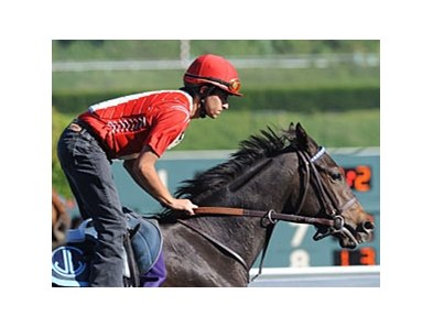 In the Slips won the Blue Norther Stakes in her 3-year-old debut in January at Santa Anita Park.