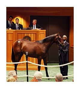 Hip 314 sold for $220,000.