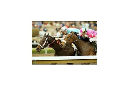 Miss Loren, left, holds off Good Student to win the Santa Maria Handicap.