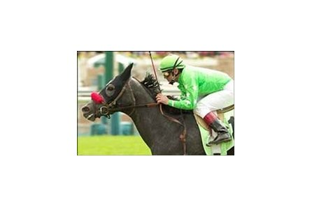 Cambiocorsa wins the Las Cienegas Handicap.