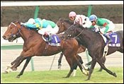 Japan Cup Race Report: Dettori Double