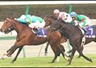 Falbrav (1) defeats Sarafan (background) in the Japan Cup, followed by Symboli Kris S (near) and Magneten.