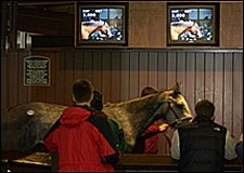 Keeneland January Average and Median Still Running Ahead of 2004 Pace