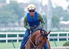 American Pharoah jogged at Churchill Downs on May 28.